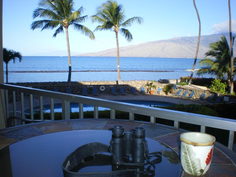 Ocean view from Lanai - Paradise Found Maui - w/ all the comforts of home - Kihei - rentals
