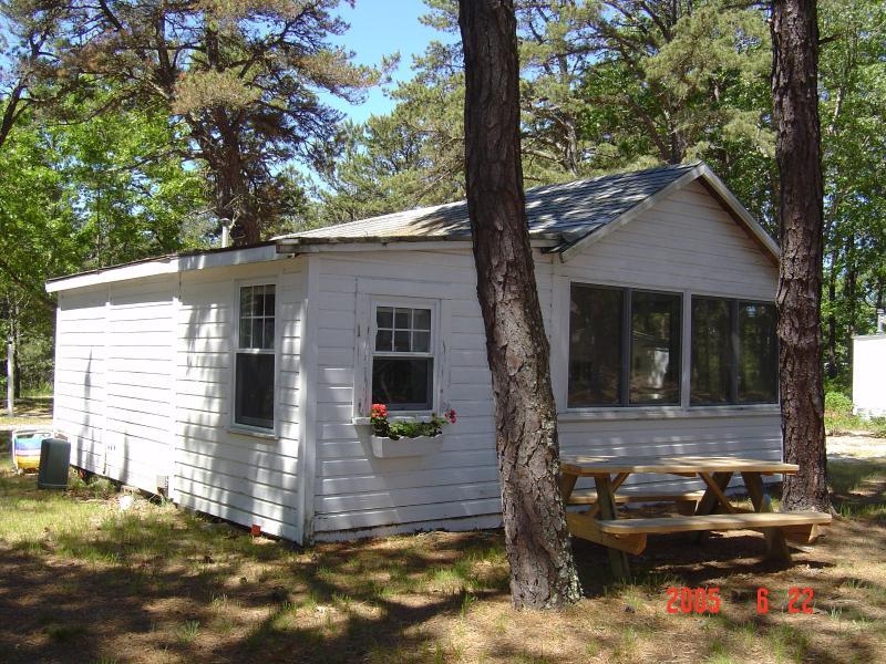 cabin front - Brownies Cabin #5 - Wellfleet - rentals