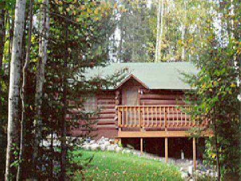 "Ranger Log Cabin  ""The Honeymoon Cabin"" - Image 1 - Ely - rentals"