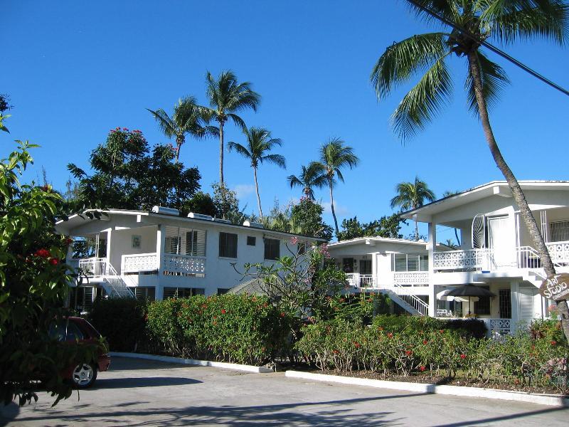 Apartments set in tropical gardens - Art Studios #5: quiet apartment next to the beach - Holetown - rentals