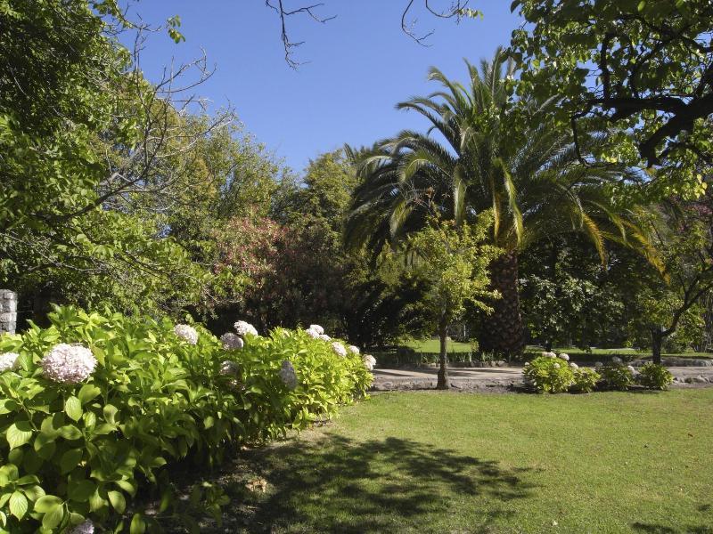 Casa Ishi Villa Garden - Oasis in Maipo Wine Region 30 Miles from Santiago - Santiago - rentals