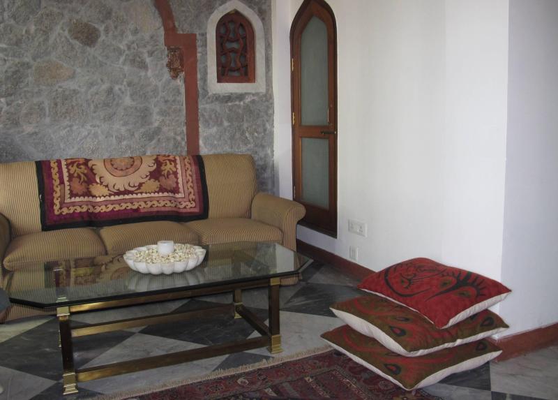 Living room - Qasr e  Feroze,   T 72/4, Hauzkhas Village, Delhi. - New Delhi - rentals