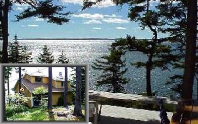 mdi oceanfront - Lingonberry Cottage - Southwest Harbor - rentals