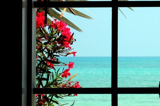 Ocean Front Luxury Home in Gated Community - Image 1 - Nassau - rentals
