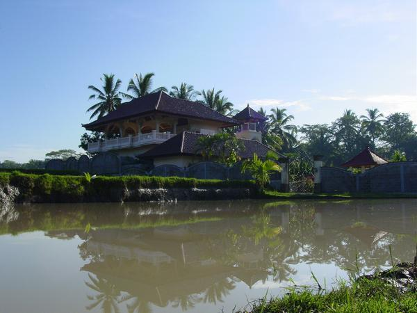 Serenity - reflection ponds during harvest time - Villa Paradise, A/C,WiFi, Private Pool, Nice Views - Ubud - rentals