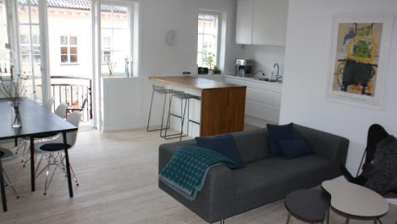 Bornholmsgade Apartment - Modern Copenhagen apartment in heart of City Center - Copenhagen - rentals