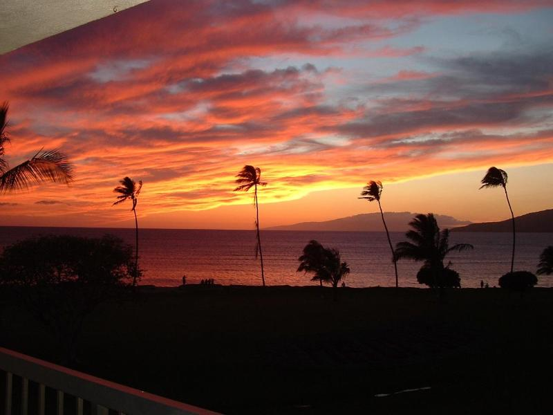 Sunset on our Lanai - Maui Sunset B421  Amazing View and Amenities - Kihei - rentals