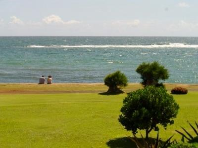 View from lanai - Remodeled Oceanfront Condo, Central East Shore at - Kapaa - rentals