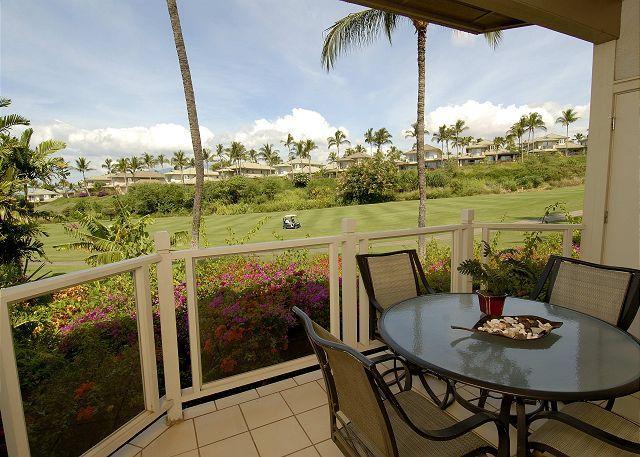 Grand Champions #65 - Image 1 - Maui - rentals