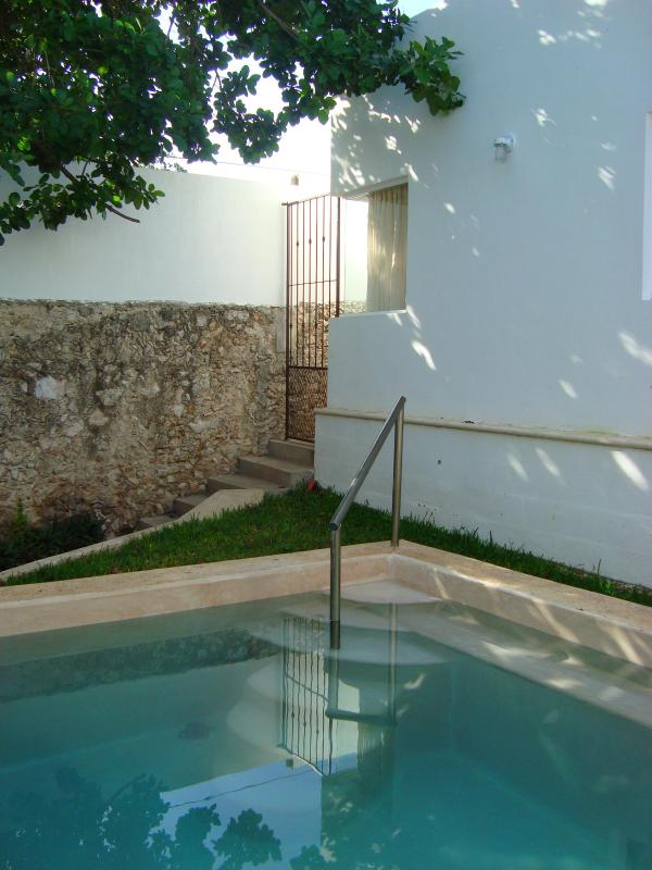 La Piña - Image 1 - Merida - rentals