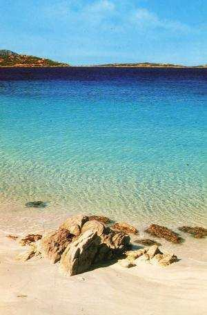 Portisco Beach - Costa Smeralda Portisco 17km from Olbia in.tl apt - Olbia - rentals