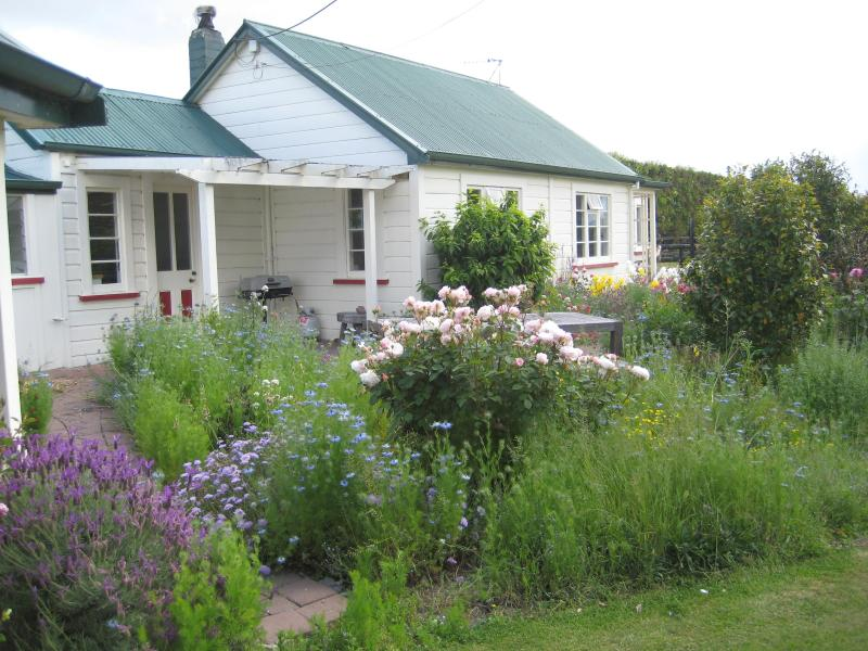 The Cottage in the spring - Hawkesbury Cottages - Hastings - rentals