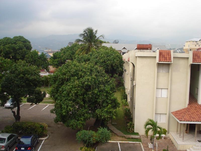 Kingston Jamaica Cozy One Bedroom Apartment - Image 1 - Kingston - rentals