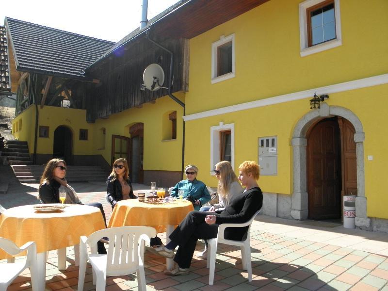 Apartment tubej - Apartment in Triglav national park - Lake Bohinj - Bohinjska Bistrica - rentals
