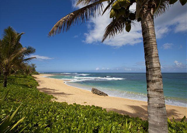 Ka Wai Aloha - Walking distance to beach - Image 1 - Hanalei - rentals