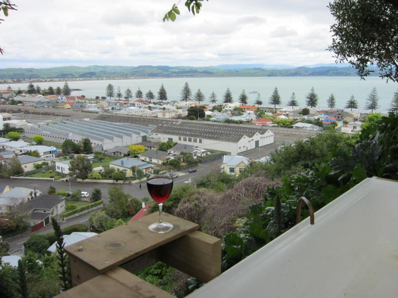 view from hot water outdoor bath - Bellbird  Bed and Breakfast in the heart of Napier - Napier - rentals
