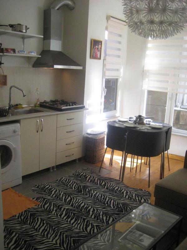 New,Quality,Central flat in Taksim - Image 1 - Istanbul - rentals