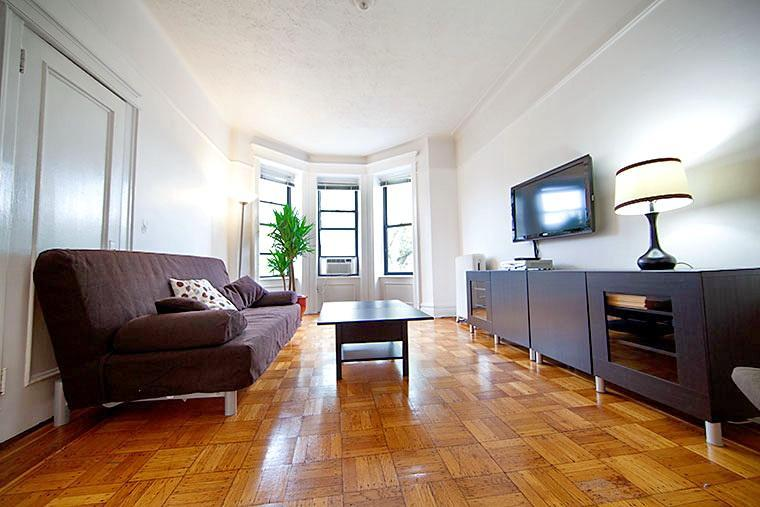 Living Room 1 - Bright and Quiet 2BR in Park Slope - Brooklyn - rentals