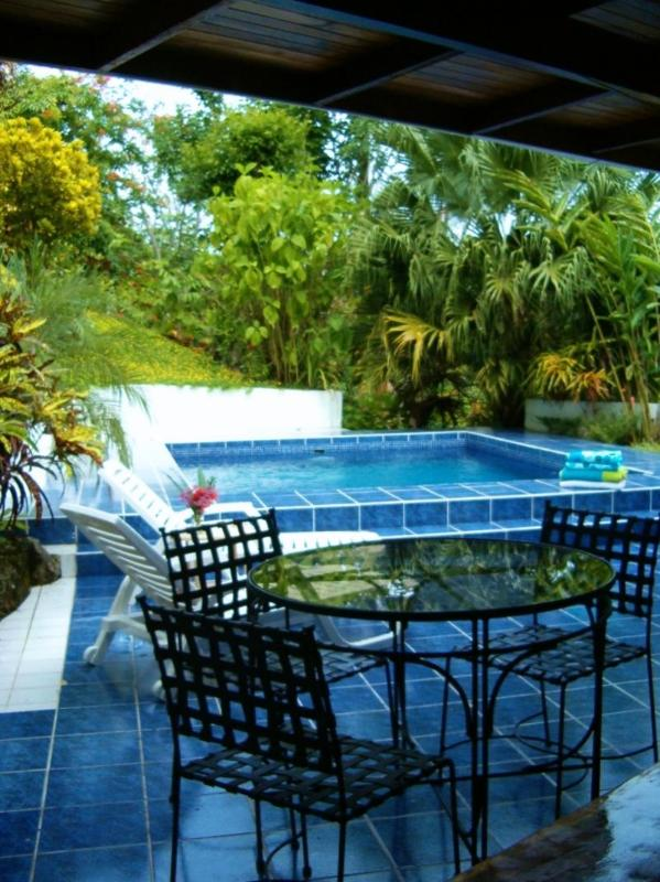 Welcome to Casa Tres Palmas! - Casa3Palmas-Villa w pool, Ask about End of Winter Specials for remaining 2017 - Manuel Antonio National Park - rentals