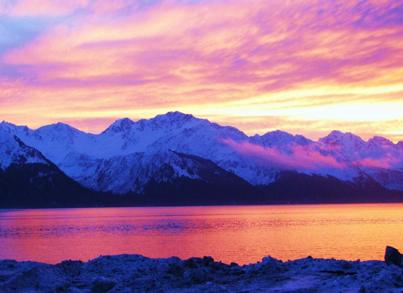 view of Resurrection Bay - Arctic Paradise B&B - Seward - rentals