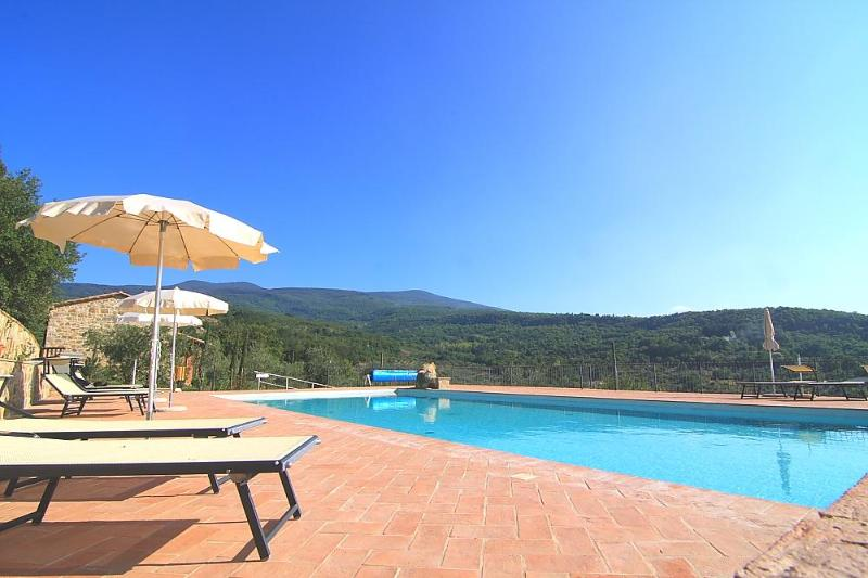 Pool with panoramic views - Castagnatello Estate - Ginestra apartment - Seggiano - rentals