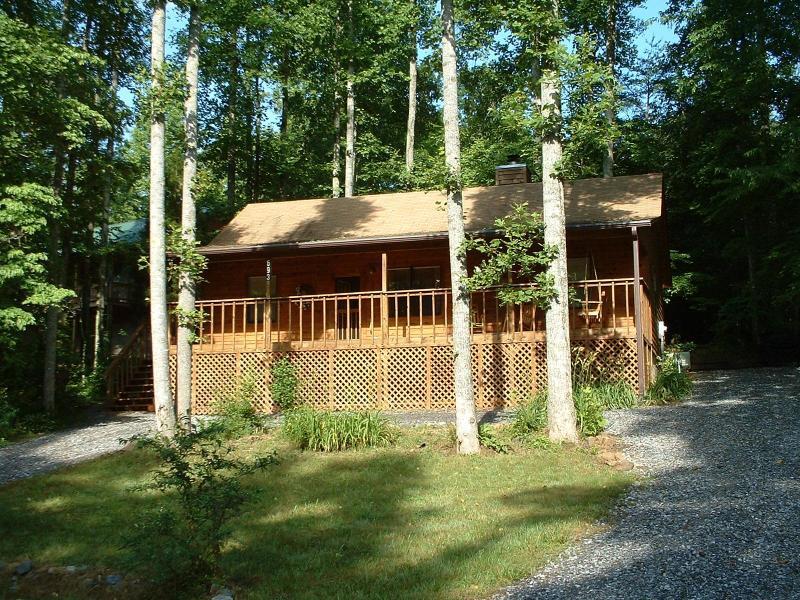 Welcome to Granny's Cabin! - Granny's Cabin - Blairsville - rentals