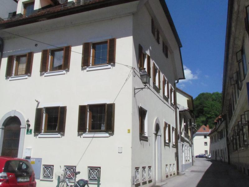 studio apartment in the centre of Ljubjana - Image 1 - Ljubljana - rentals