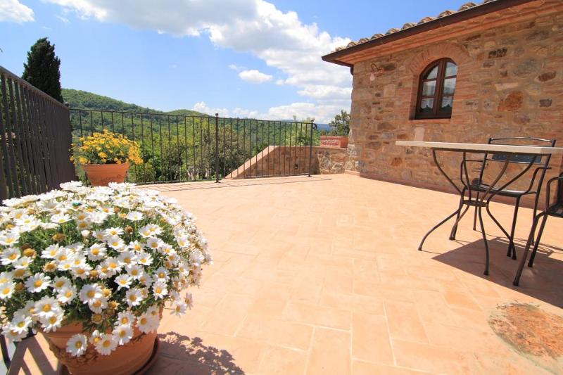 Quercia apartment - Terrave with charming views - Castagnatello Country House - Quercia unit - Seggiano - rentals