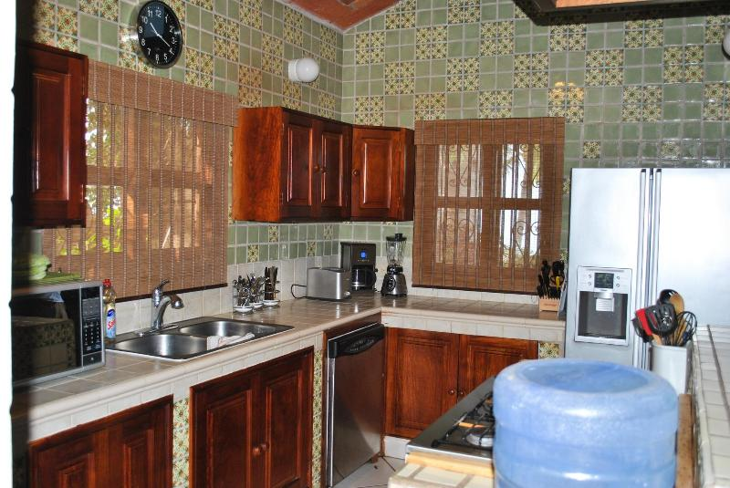 Kitchen - Not 'near the beach'.  We're ON the beach! - Bucerias - rentals