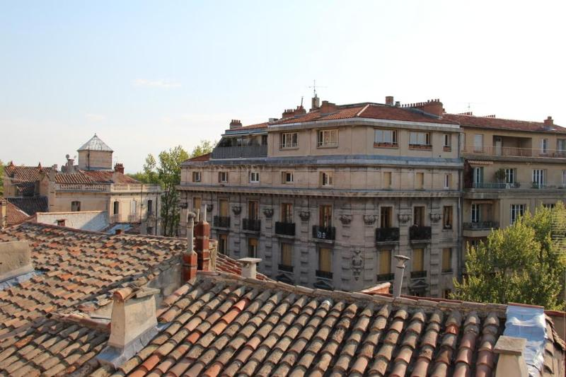 Panoramic view from the flat   - Charming flat (with A/C) in the historical center - Avignon - rentals