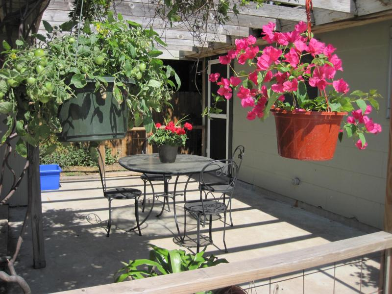 Patio off of kitchen - 2/1 house enjoy S Lamar, Downtown and Zilker Park - Austin - rentals