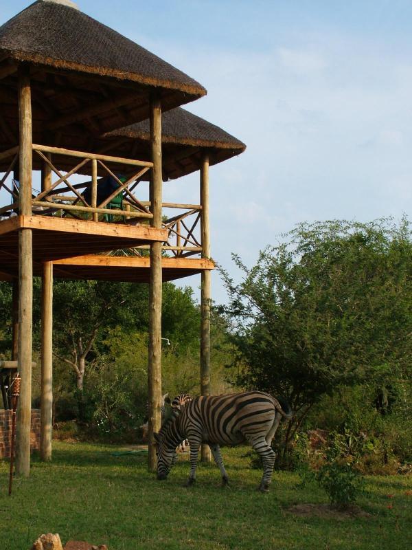 Majuli River Lodge with at Kruger Park - Majuli River Lodge - Marloth Park - rentals