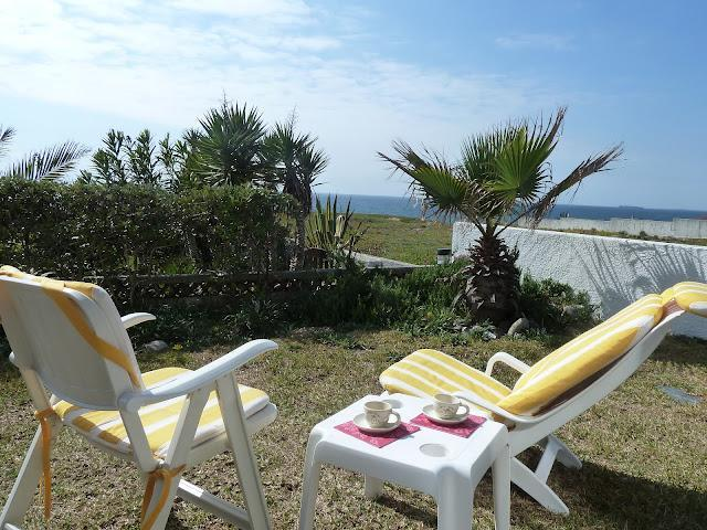 Garden with sea view - Porto Covo Stunning House by the sea in Alentejo - Porto Covo - rentals