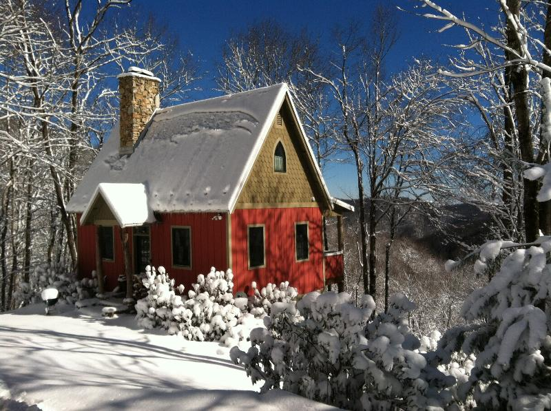 Snowy January Day at Granpy Aut at On the Windfall - Granpy Aut at On the Windfall - 215 acre retreat - Lansing - rentals