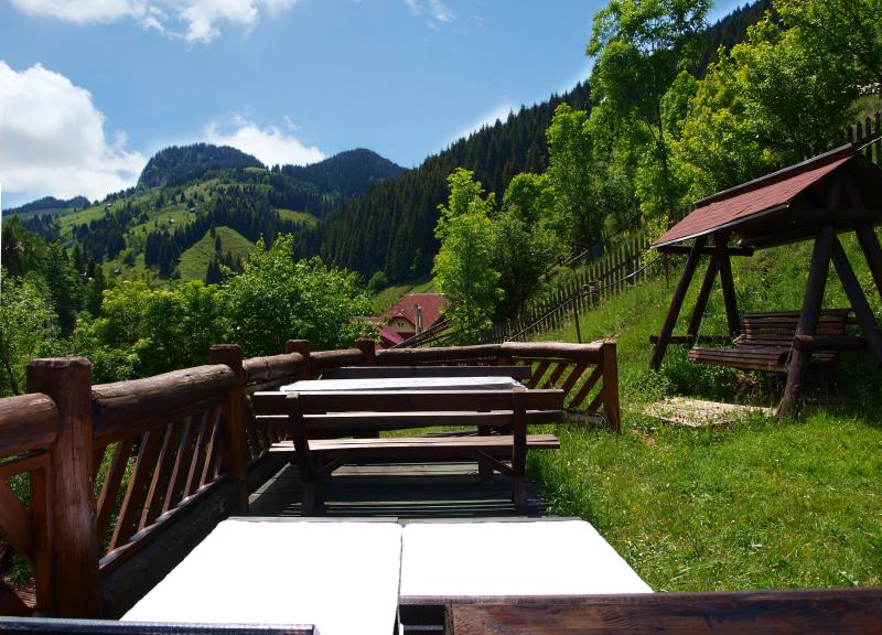 Relaxing Area - Bradul Chalet - Brasov - rentals