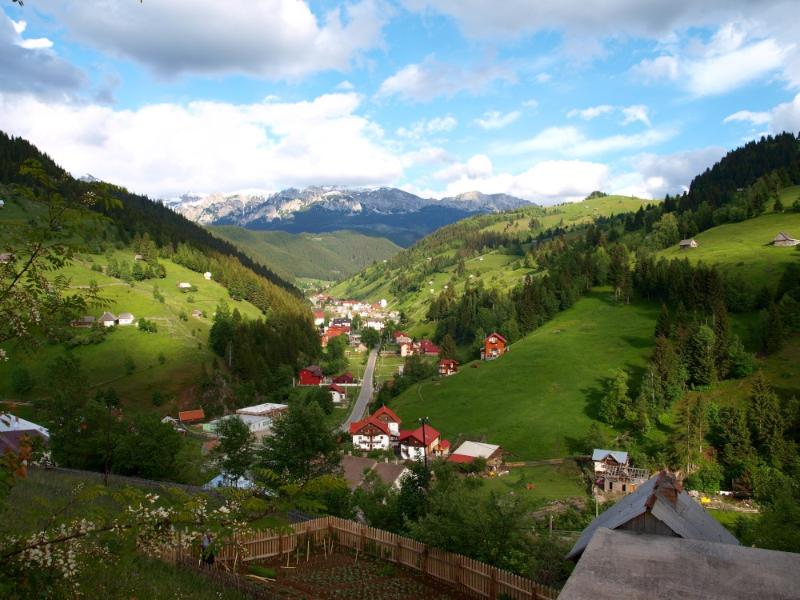 View from front of the house - Bradul Chalet - Brasov - rentals