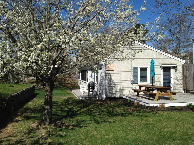 Spacious cottage steps to Cooks Brook beach - Spacious cottage steps to Cooks Brook Beach! - Eastham - rentals