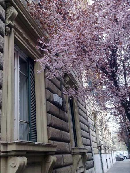 CASA GIGLI - ARTS LODGE - Image 1 - Rome - rentals