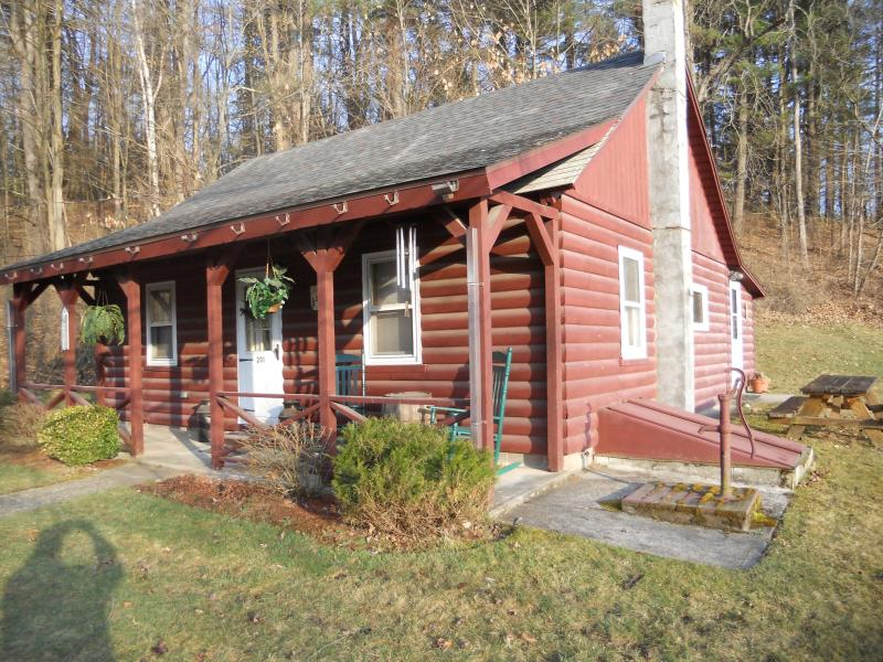 Cozy Log Cabin - Lake George Area House - Lake George - rentals