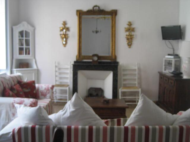 Pretty, Light & Airy Apartment, Heart of Limoux - Image 1 - Limoux - rentals