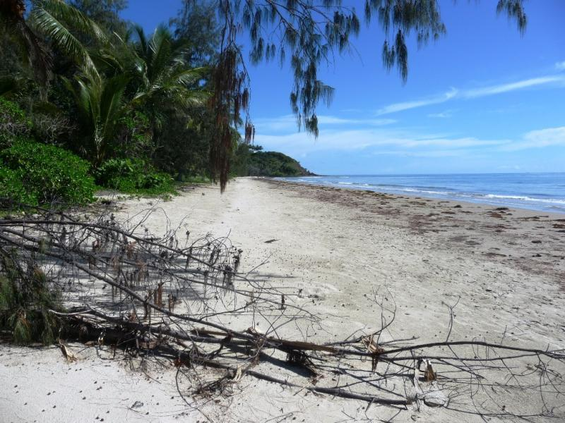 Las Palmas #2 - Five Steps to the Beach! - Image 1 - Port Douglas - rentals