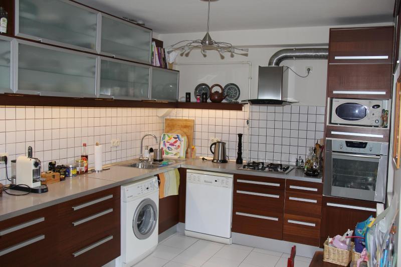 Kitchen - washing machine, dishwasher, electric & microwave oven, etc. - Queen Zita apartment near Chain Bridge - 130 m2 - Budapest - rentals