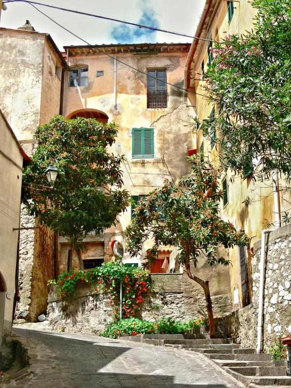 View of the house - Charming holiday apartment in beautiful Elba - Rio Nell'Elba - rentals