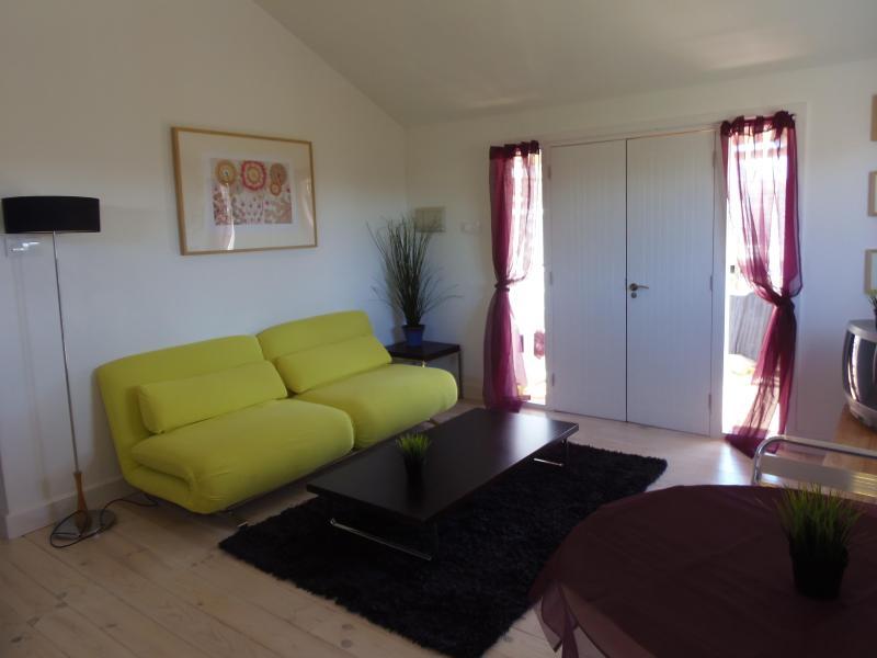Lounge - 'Casita Azulita'  a short walk to the beach - El Palmar - rentals