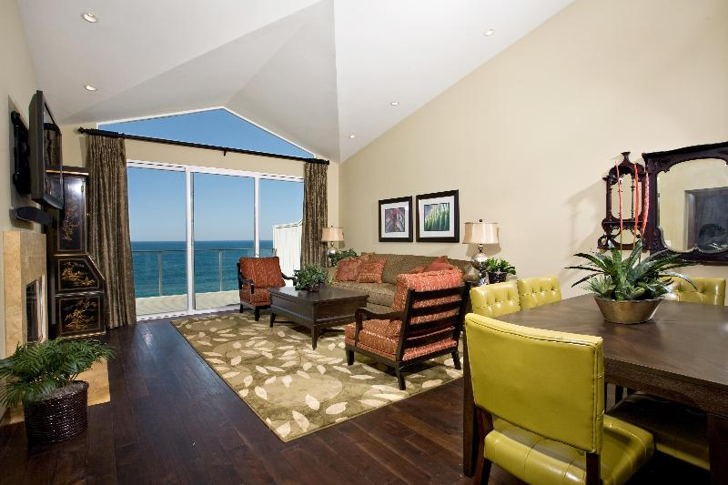 Grand Room looking out over the Pacific! - Cliff-top condo over-looking Pacific, Encinitas CA - Encinitas - rentals