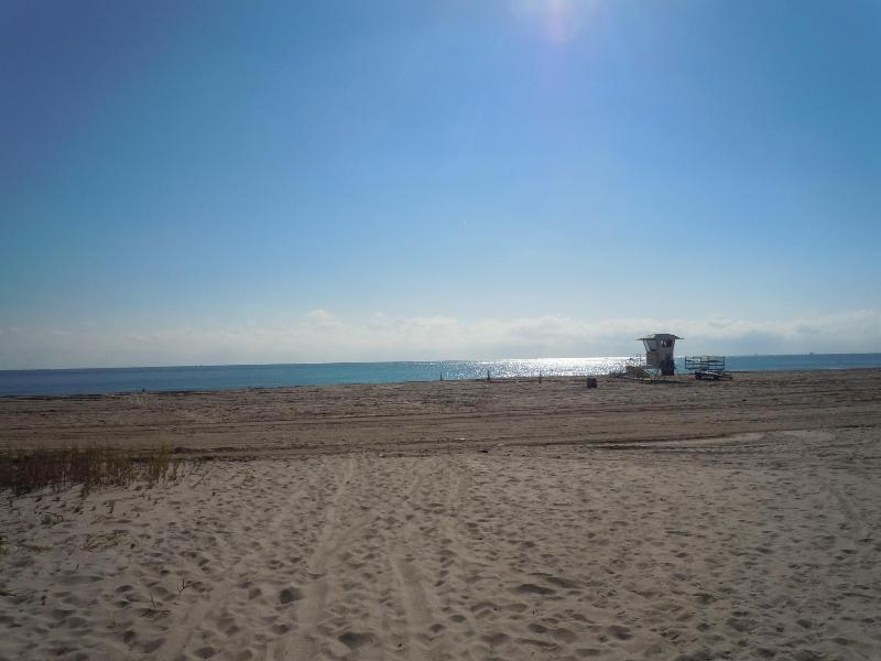 Our Beach - Half block  - beach, Share Condo, 1st floor corner - Pompano Beach - rentals
