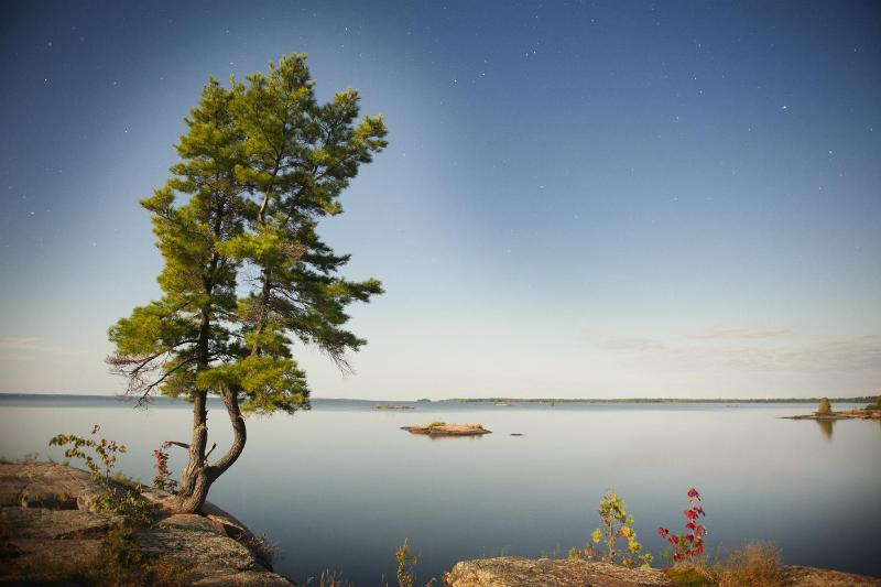 Discover Privacy, Peace & Tranquility - Rent At The Lake - North Bay - rentals