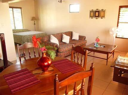 PARADISE PTG - 43885 - 1 BED APARTMENT WITH KITCHEN & POOL - Image 1 - Negril - rentals