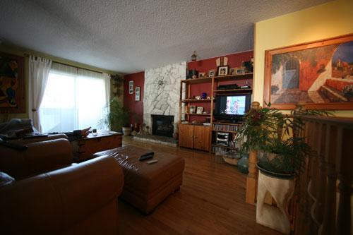 Living room in Coquitlam, 30 min from Vancouver downtown - Apartment 30 min from downtown Vancouver - Coquitlam - rentals