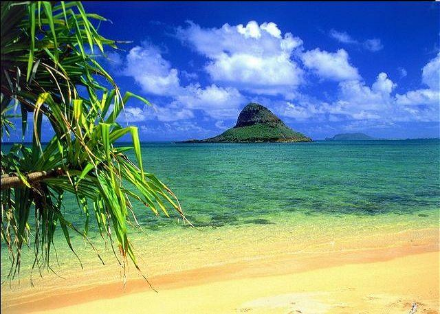 Your own Beachfront Bungalow only $240 per night - Image 1 - Kaneohe - rentals